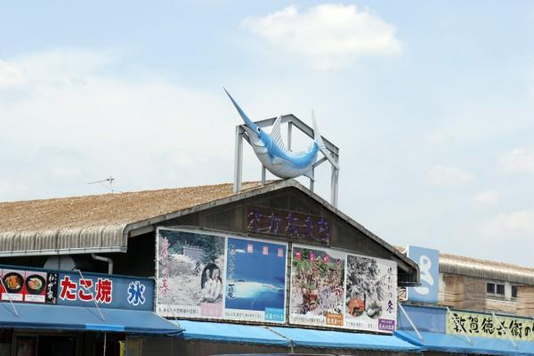 日本海さかな街01