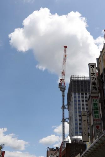 福井駅前再開発